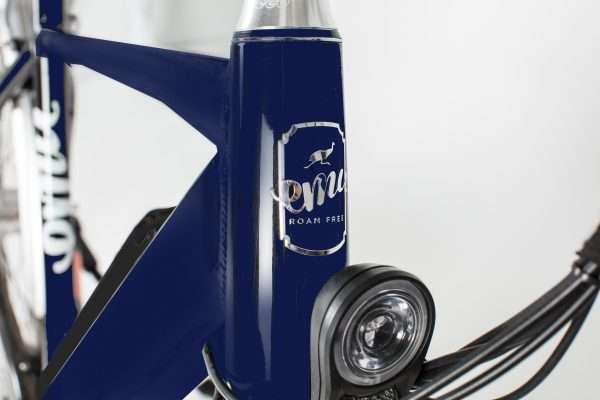 Blue Emu crossbar bike with front light